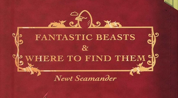 pop culture tragic, harry potter, newt scamander, fantastic beasts, fantastic beasts and where to find them movie, fantastic beasts book, fantastic beasts and where to find them movie, comic relief, jk rowling